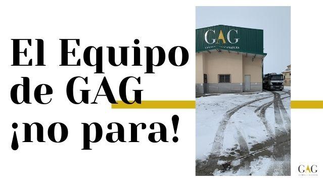 El Equipo de GAG ¡No Para!
