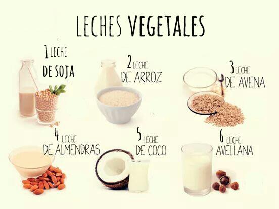 Las bebidas vegetales, ¿que son realmente?